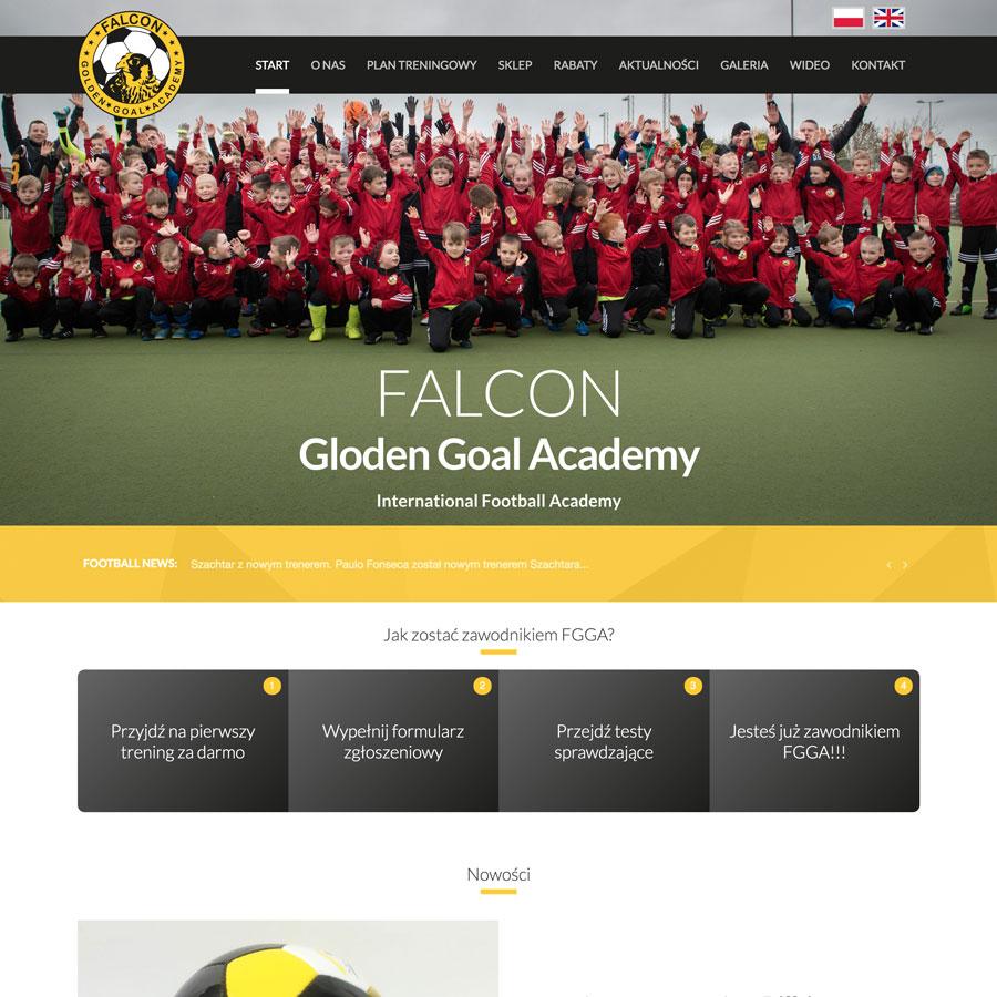 Falcon Academy
