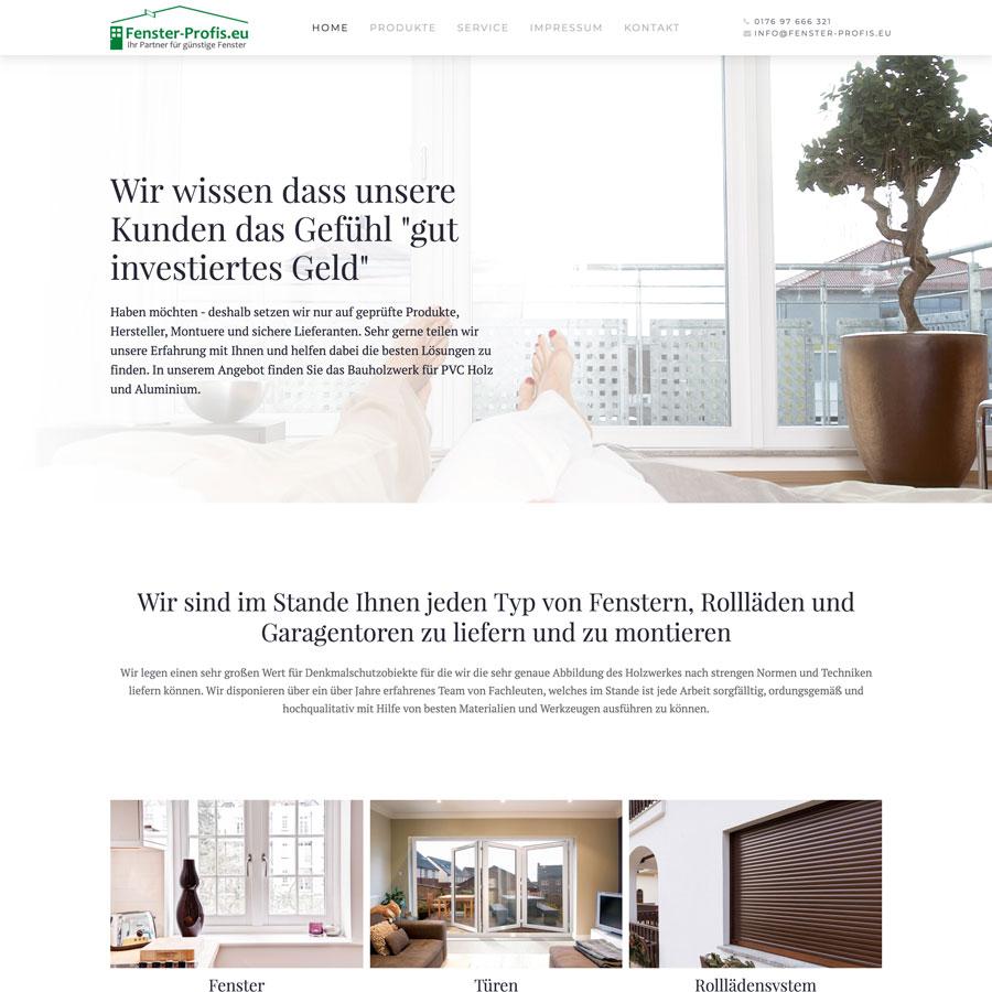 Fenster-Profis